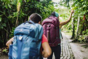 Eagle Creek Global Companion travel pack