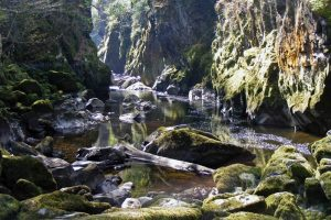 fairy glen in Snowdonia