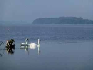 rams island northern ireland