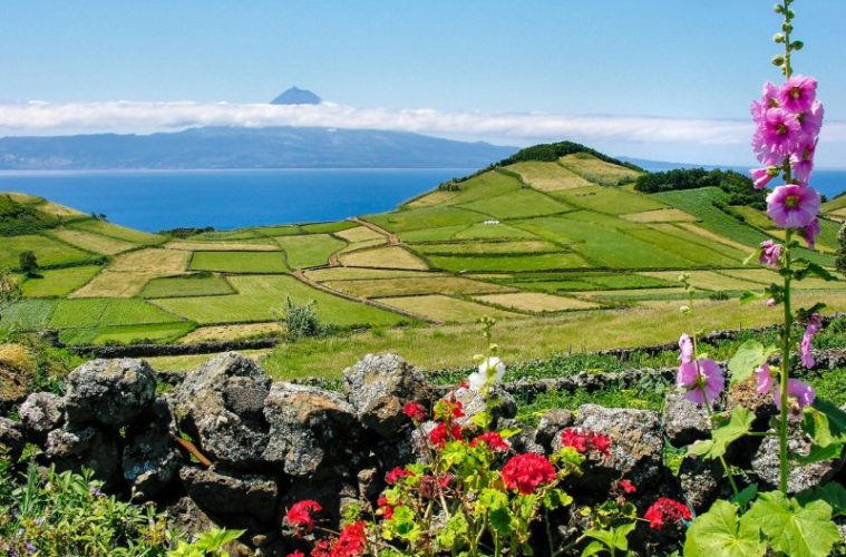 42, Sao Miguel - View to Pico in the azores