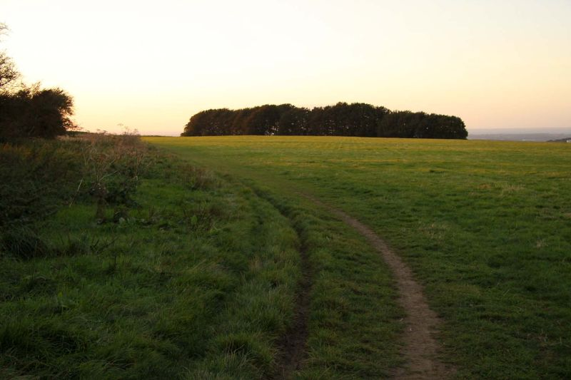 sunrise on the ridgeway - best night walks