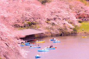 tokyo -cities for adventure pt 2