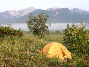 wild camping in summer
