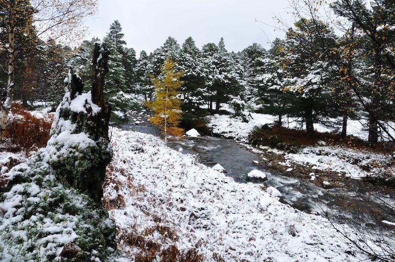 iron bridge walk in cairngorms - best winter UK walking routes