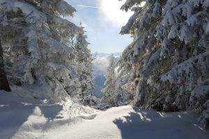 snow shoe in a winter wonderland in Bavaria