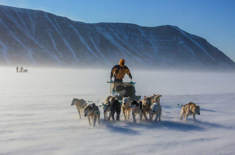 book review for polar eskimo
