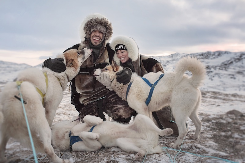 greenland travel guide husky dog sledding