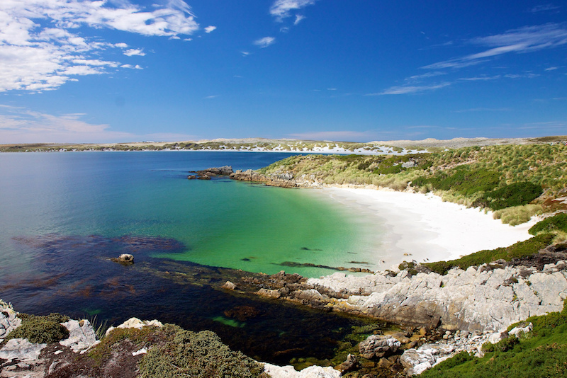 why the falklands should be next n your bucket list