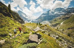 Walkers on the alpine passes trail with the Turtmann glacier in the distance