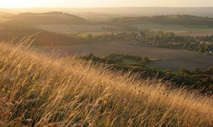 A sunset over Harting Down in the South Downs National Park