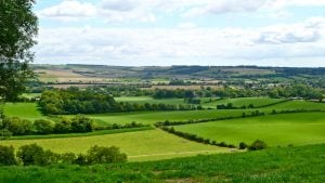 A view of Meon Valley on one of the best South Downs Walks