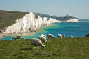The Seven Sisters walks from Birling Gap in East Sussex top SOuth Downs walks