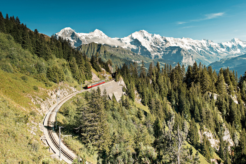 Cogwheel Railway, Mount Schynige Platte above Wilderswil, best hikes in Bernese Oberland.