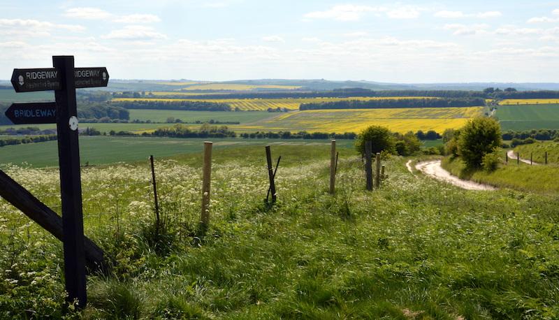 A waymark on the Ridgeway, Britain's oldest road