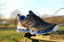 Adidas Terrex Fast GTX Surround shoes