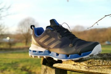 Adidas Terrex Fast GTX Surround shoes