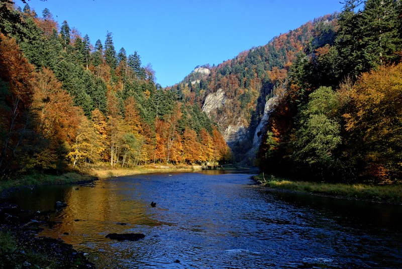 dunajec river in poland, best things to do in Poland