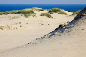 Moving sand dunes in Poland