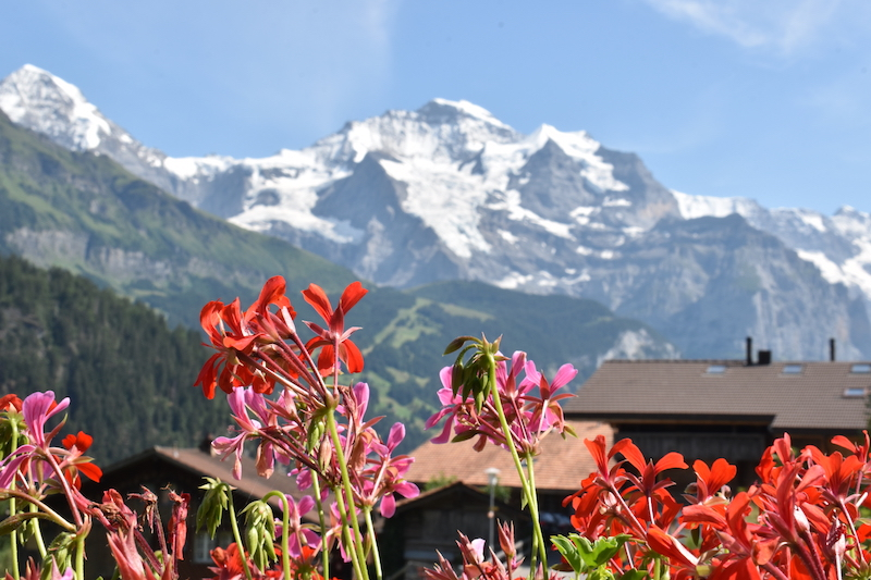 Snowy duo of Jungfrau (4,158m) and Mönch (4,107m) from Isenfluh