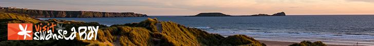 Swansea Bay Banner