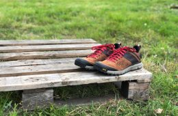 Danner Trail 2650 shoes