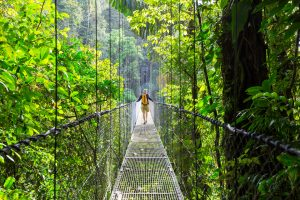Costa Rica Cloud Forest reserve best tours to go on in 2020