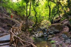 Valley of the Butterflies, Rhodes, undiscovered adventures in Greece