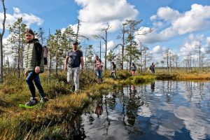 Bog shoeing in latvia - adventerous things to do in Latvia
