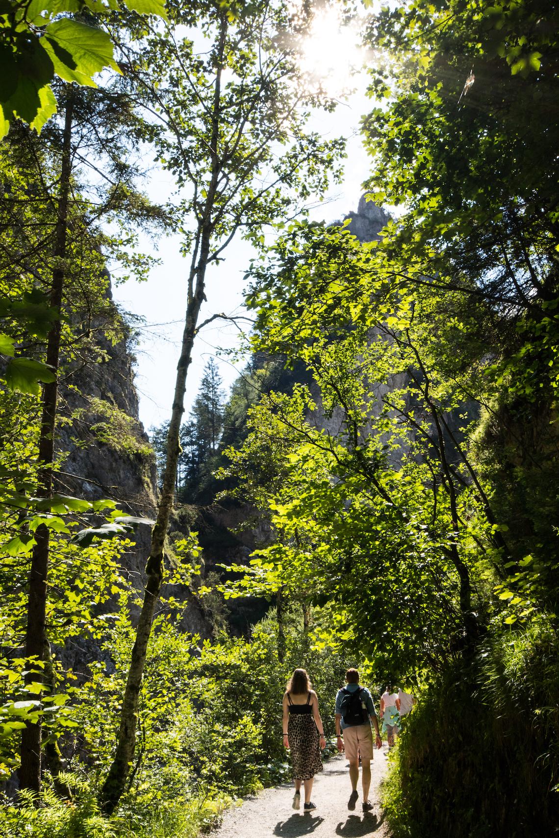 Kundl Gorge walk through the forest, best hikes in Wildschönau