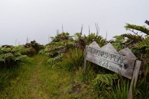 Sign to Diana's peak best activities on St Helena