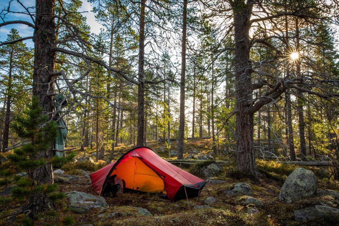 Scandinavia-forest-camping